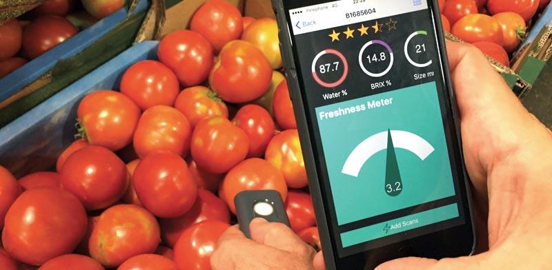 מאפליקציה אקלר–טק, מתי הפירות בשלים לקטיף /  צילומים: טלי גלעדי  ובאדיבות החברה