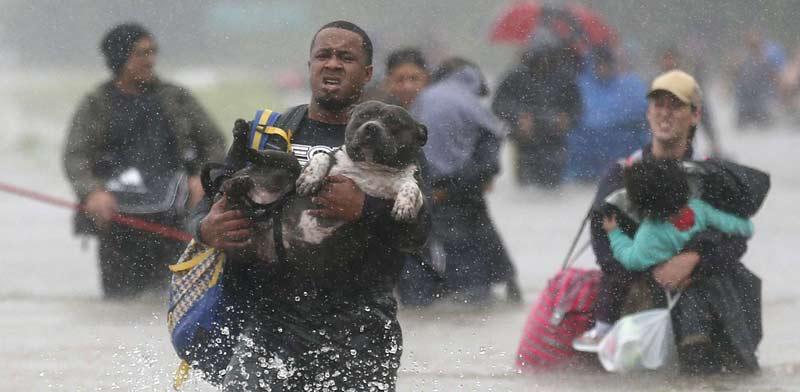 הוריקן הארווי  / צילום: רויטרס