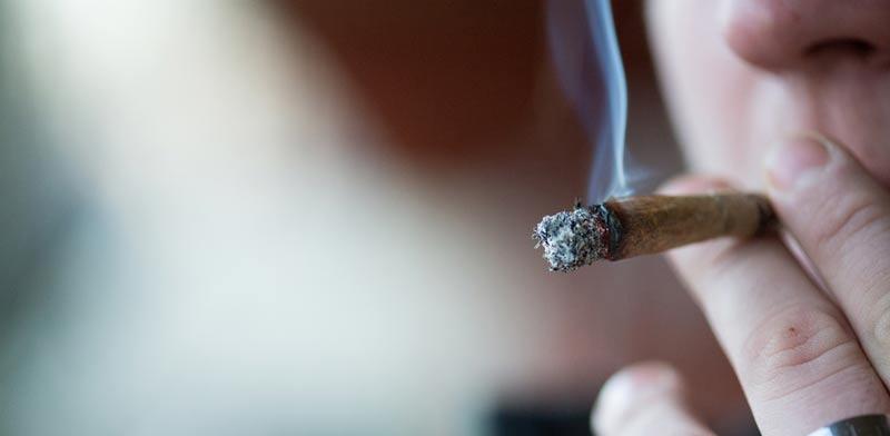 שימוש בקאנביס ועבירת נהיגה תחת השפעת סמים/  צילום: Shutterstock/ א.ס.א.פ קרייטיב