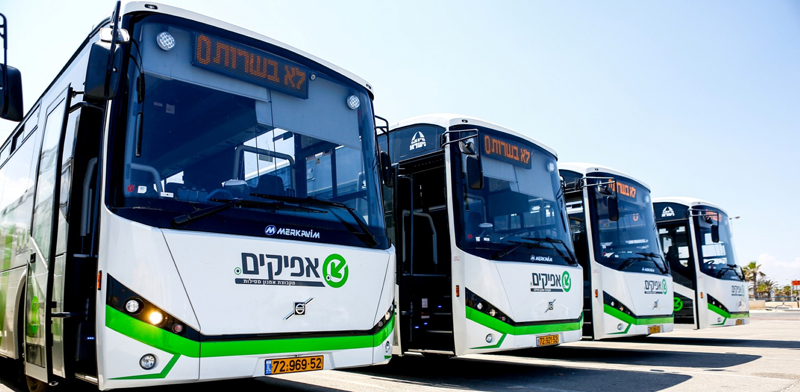 """אוטובוסים של אפיקים / צילום: יח""""צ"""