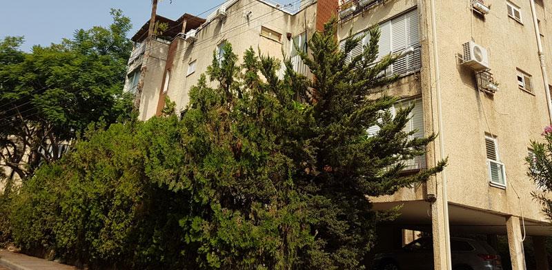 הבניין ברחוב בראשית ברמת השרון / צילום: איל יצהר