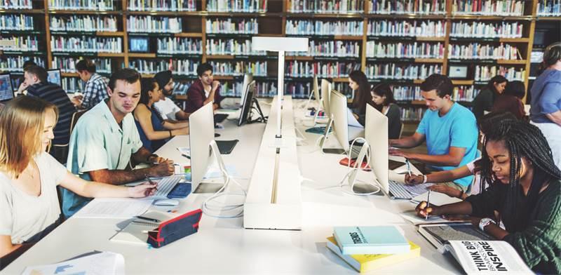 סטודנטים בספרייה / צילום: שאטרסטוק