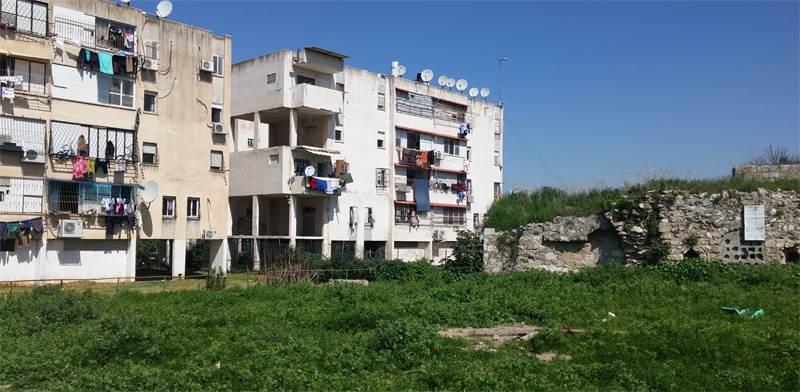 """שכונת רמת אשכול בלוד / צילום: יח""""צ"""