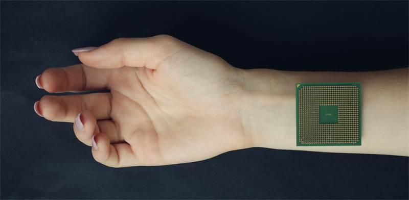 פיצ'ר טכנולוגי ביד / צילום: שאטרסטוק