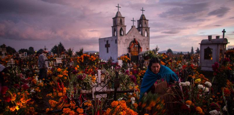 בית קברות מוצף פרחים /  צילום: gettyimage ישראל