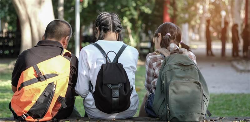 סלולרי, בתי ספר / שאטרסטוק