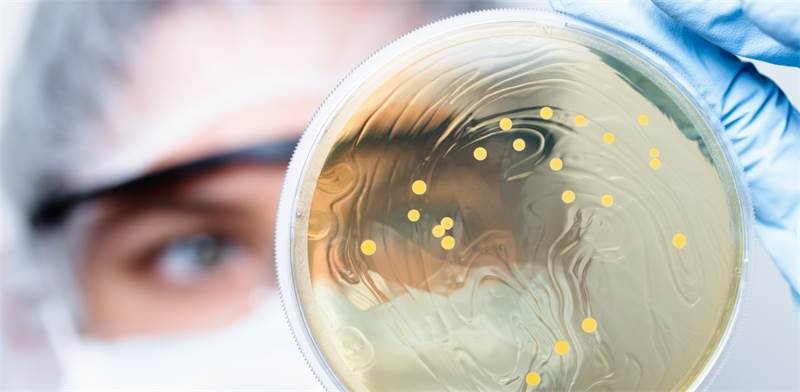probiotics, antibiotics, clinical trial, bacteria  image: Shutterstock