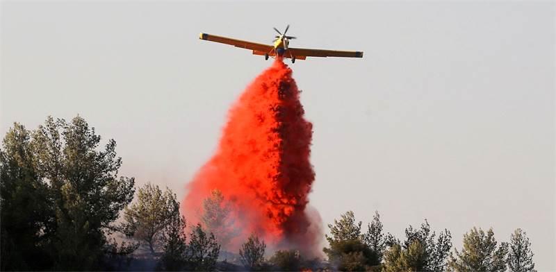 מטוס כיבוי בשריפה בכרמל / צילום: Reuters