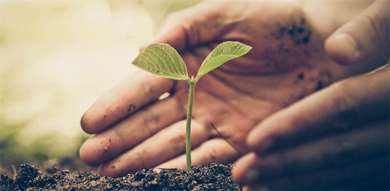 אחריות תאגידית / צילום: Shutterstock