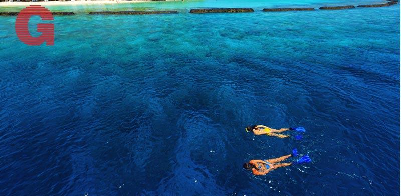 שנירקול באיים המלדיביים  /צילום באדיבות ספיריט הפקות עולם