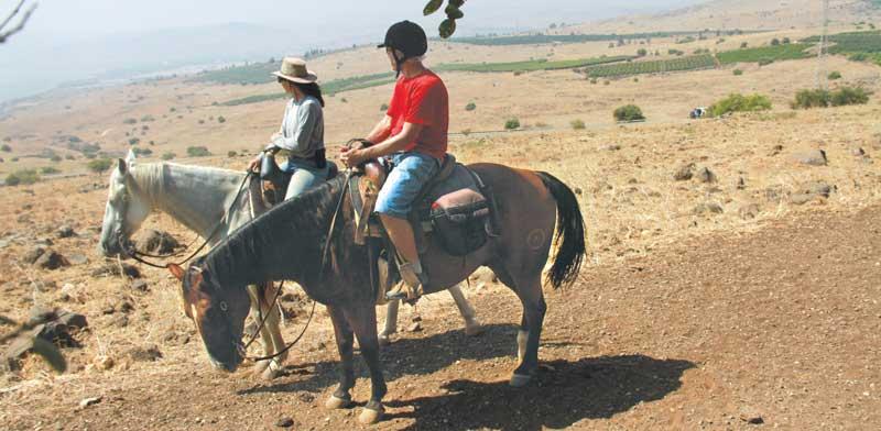 טיול סוסים מחוות ורד הגליל / צילום: אורלי גנוסר