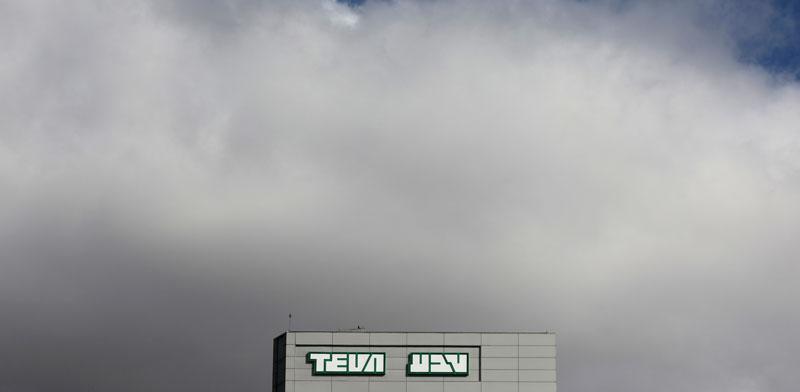 מפעל טבע/  צילום:  רויטרס - Ammar-Awad