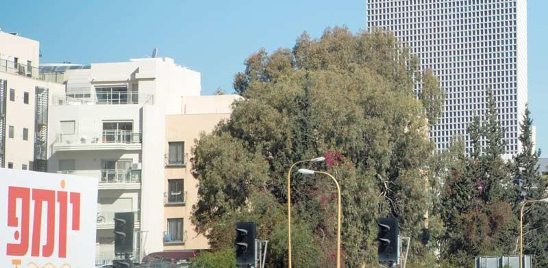 מתחם סקיה של בזק באזור צומת מסובים / צילום: שלומי יוסף