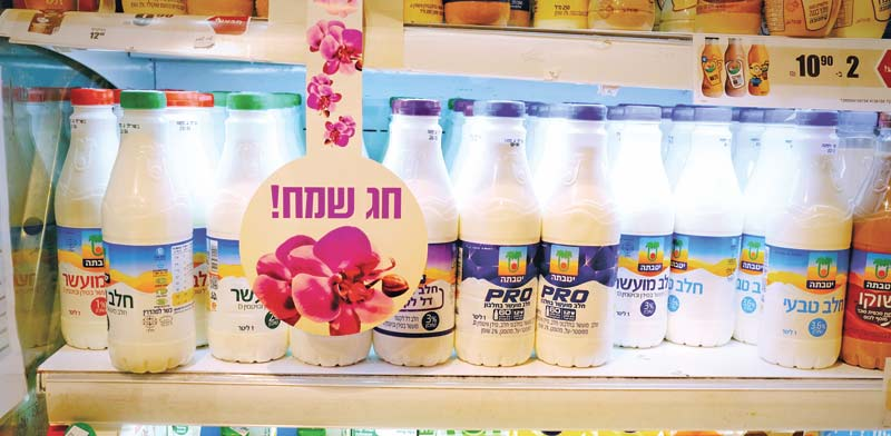 מוצרי חלב / צילום: שלומי יוסף