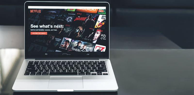 נטפליקס  / צילום: Shutterstock  א.ס.א.פ קרייטיב