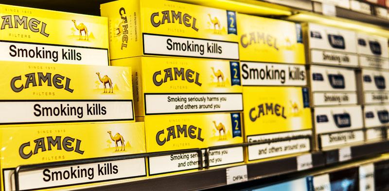 סיגריות camel / צילום: shutterstock