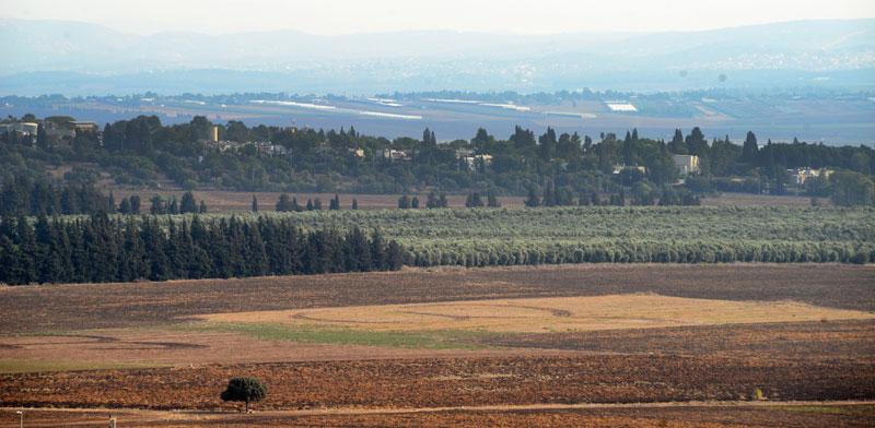 עמק יזרעאל / צילום: איל יצהר