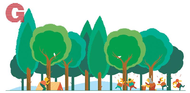 ביער ביער / איור: עומר הופמן