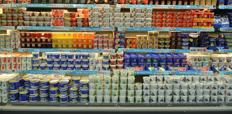 מוצרי חלב / צילום: תמר מצפי