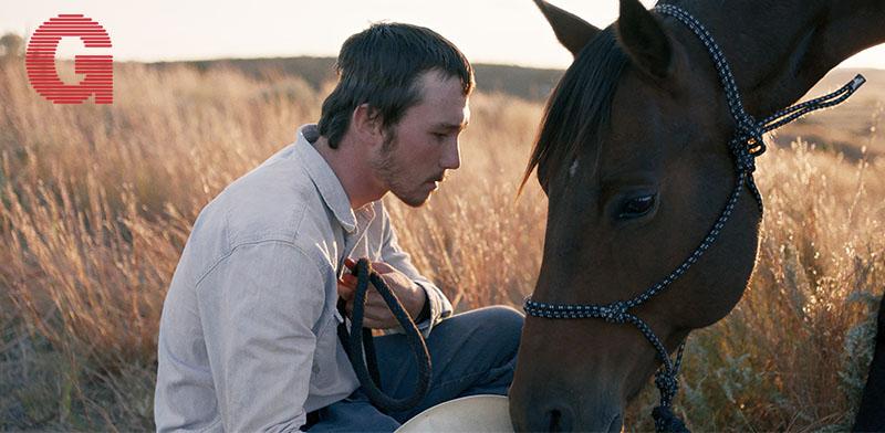 """""""הרוכב"""" / צילום: באדיבות בתי קולנוע לב"""