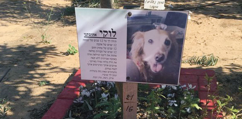 Beit Yanai pet cemetery Photo: PR