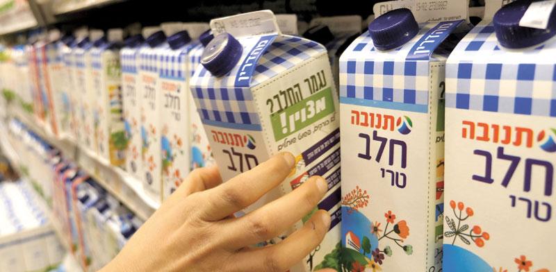 חלב תנובה / צילום: Shutterstock, א.ס.א.פ קריאייטיב