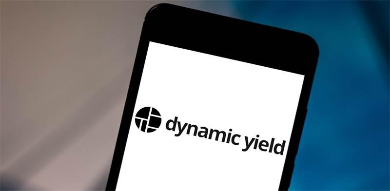 Dynamic Yield / צילום: shutterstock, שאטרסטוק