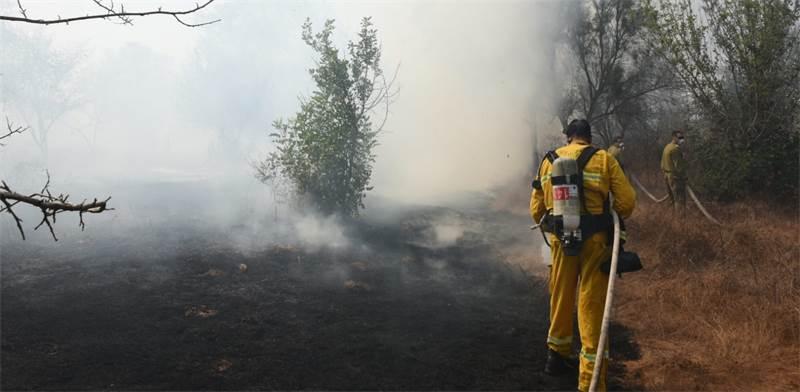 השריפות בדרום / צילום: כבאות והצלה לישראל מחוז דרום