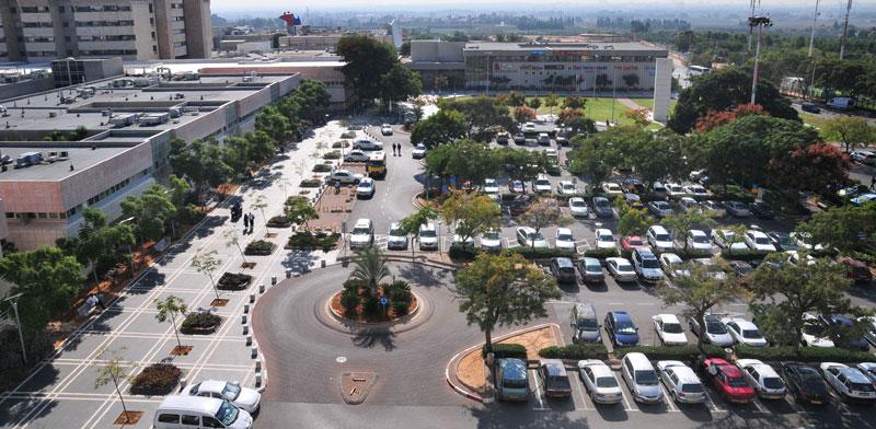 אזור בית החולים שיבא תל-השומר / צילום: תמר מצפי