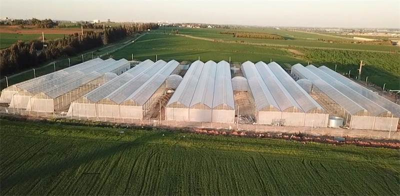 Together greenhouses
