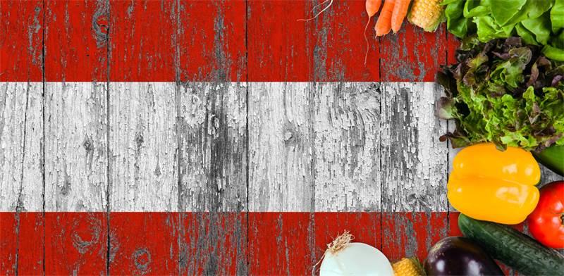 כלכלה אוסטרית/ צילום: שאטרסטוק