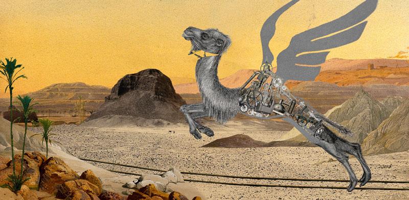 """איה בנטור וגלי בליי, """"גמלים פורחים באוויר"""" / צילום: יח""""צ שבוע העיצוב"""