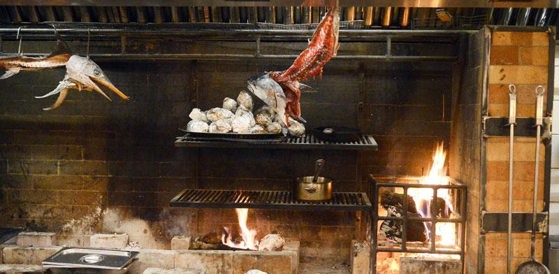 תנור העצים הגדול / צילום: איל יצהר