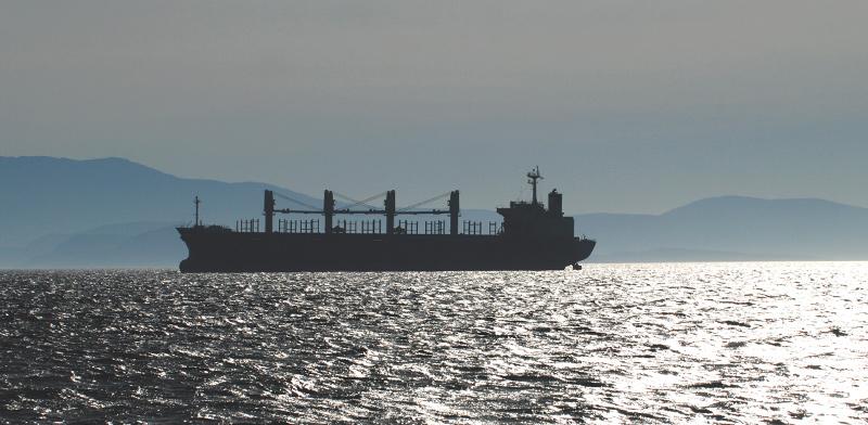 ספינה של צאקוס אנרג'י, חברת ספנות ותיקה עם צי של 70 ספינות תובלה  / צילום: shutterstock, שאטרסטוק