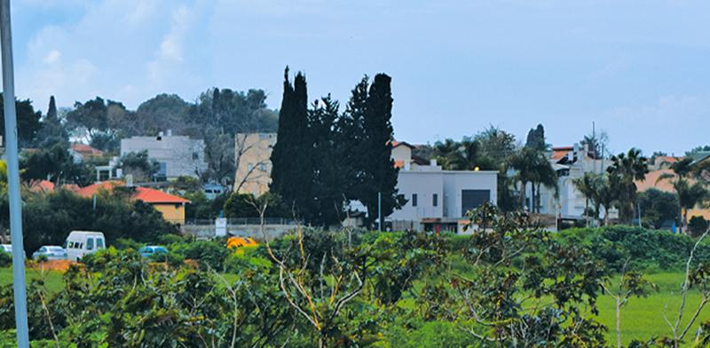אבן יהודה/ צילום: בר אל