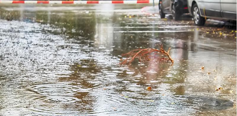 Rain Photo: Shutterstock