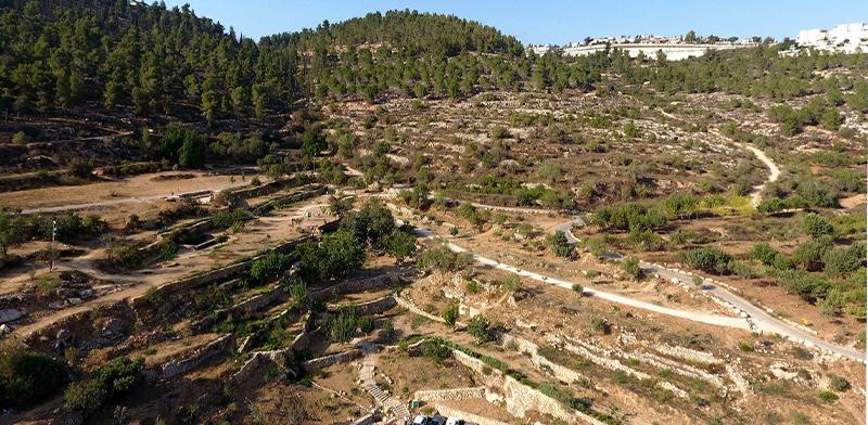 רכס לבן / צילום: דב גרינבלט, החברה להגנת הטבע