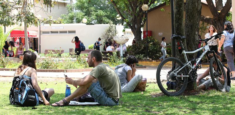 סטודנטים במכללת בית ברל / צילום: חן גלילי