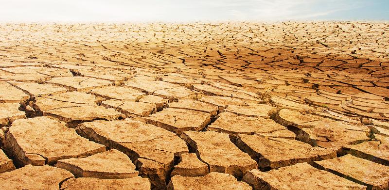 Drought / Photo: Shutterstock, Shutterstock.com