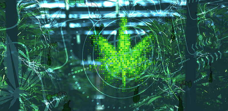 סחר בסמים ברחבי הרשת / אילוסטרציה: shutterstock