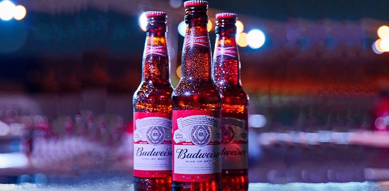 "בירה באדווייזר  / צילום: יח""צ"