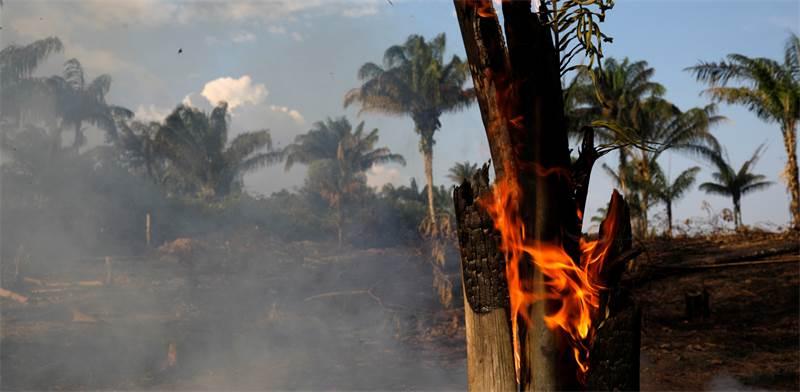 השריפה ביערות האמזונס בברזיל / צילום: Bruno Kelly, רויטרס
