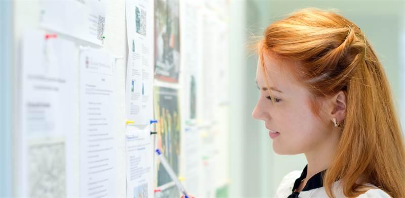 סטודנטית צעירה עוברת על מודעות עבודה / אילוסטרציה: Shutterstock