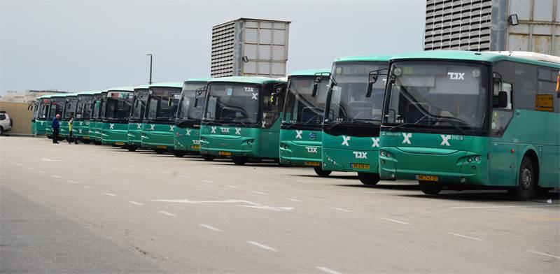 אוטובוסים של אגד / צילום: תמר מצפי