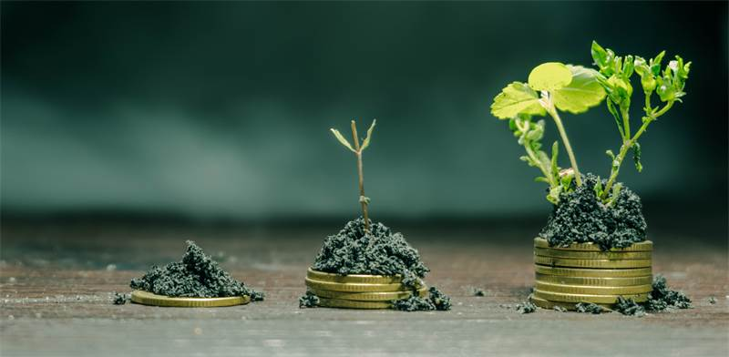 Investments Photo: ASAP Creative Shutterstock