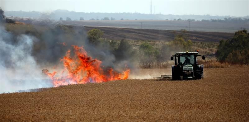 שריפה בצד הישראלי ליד גבול עזה במאי האחרון / צילום: אמיר כהן, רויטרס