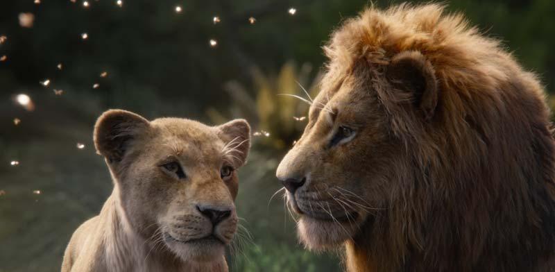מלך האריות  / באדיבות פורום פילם