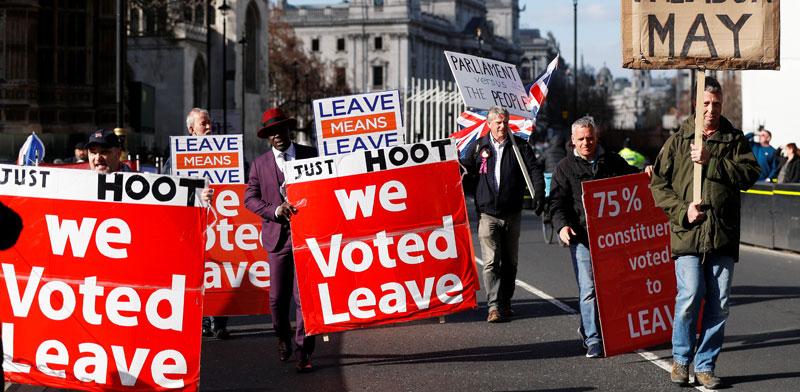 הפגנה בעד היציאה מהאיחוד האירופי /צילום: רויטרס, Peter Nicholls