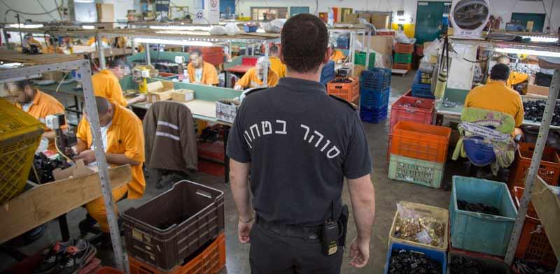 אסירים עובדים בכלא רימונים / צילום: אלון רון