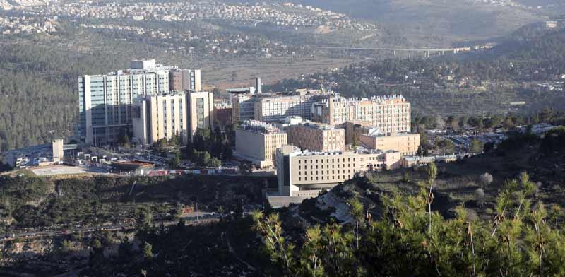 בית חולים הדסה עין כרם / צילום: איל יצהר